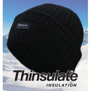 Thinsulate Chunky Knit Beanie Hat